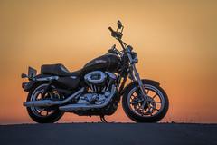 Momentos de libertad (Roberto_48) Tags: harley davidson luz puesta sol moto motocicleta