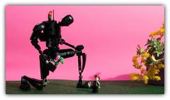 K-2so (peter-ray) Tags: k2so lego star wars minifigure floreal peter ray moc brick samsung nx2000