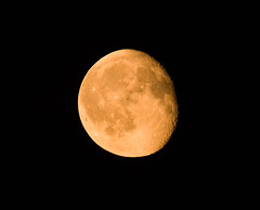 Gibbous Moon (suerob) Tags: moon waning wane gibbous 23 july 2016 crater sea detail orange red nature space astronomy astrology lunar luna sky night
