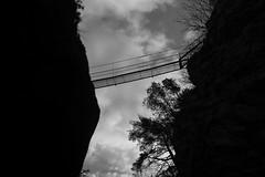 the bridge (Toni_V) Tags: m2403879 rangefinder digitalrangefinder messsucher leica leicam mp typ240 type240 35lux 35mmf14asph 35mmf14asphfle summiluxm hiking wanderung randonnée escursione niedergestelngoppenstein jolibach bridge hängebrücke suspensionbridge lötschbergersüdrampe wallis oberwallis valais bw monochrome blackwhite schwarzweiss switzerland schweiz suisse svizzera svizra europe ostersonntag ©toniv 2017 170416