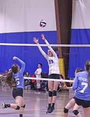 IMG_2596 (SJH Foto) Tags: girls volleyball teen teenager team quickset storm u14s net battle spike block action shot jump midair