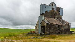 NT3.0033-CW1605618_38670 (LDELD) Tags: palouse pullman washington unitedstates us old abandoned agricultural building grainery fallingdown granary