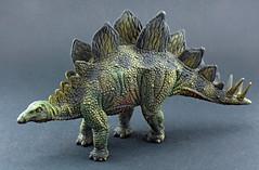 Stegosaurus (RobinGoodfellow_(m)) Tags: collecta stegosaurus