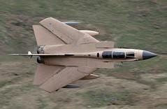 SWEPT PINKY (Dafydd RJ Phillips) Tags: zg750 operation granby storm desert raf marham loop mach aviation military war gulf 1991 iraq