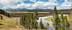 Lazy River - Explore (Ron Drew) Tags: nikon d800 yellowstone yellowstonenationalpark wyoming nationalpark mountains trees river yellowstoneriver clouds summer bison outdoors wildlife panorama stitched valley haydenvalley landscape americanbison park hills americanwest usa forest
