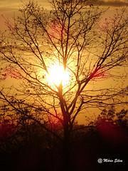 Águas Frias (Chaves) - ... pôr do sol no campo ... (Mário Silva) Tags: primavera portugal natureza abril paisagem campo chaves aldeia trásosmontes campestre 2014 madeinportugal ilustrarportugal águasfrias lumbudus