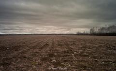 hudson-224 (Tony Vincelli) Tags: farm hudson leicam8 cv21mm