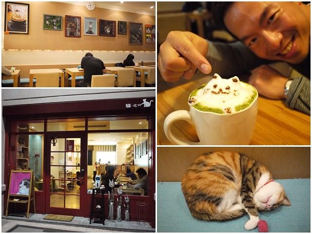台中貓餐廳立體貓拉花貓旅行咖啡輕食館page