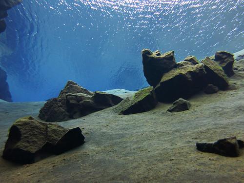 Iceland 2014 - Silfra dive - IMG_0599
