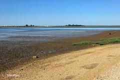Ria de Huelva  .IMG_3419 (XimoPons : vistas 3.350.000 views) Tags: landscape huelva paisaje andalucia marismas condadodehuelva ximopons