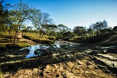Pausa para beber gua (Igor A. Mota) Tags: brazil nature brasil landscape sony natureza cu gua rvore fotografiadepaisagem photographyoflandscape igormfotgrafo igormotafotgrafo fotgraforiodejaneiro igordealvarengamota