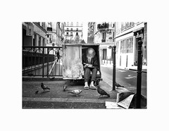 mendiant dans la rue Saint Martin - Paris (© joaquim nunes) Tags: blackwhite leicam6 leica blancoenegro pretoebranco light people birds paris france