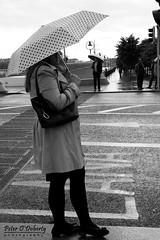 (Peter O'Doherty (Dublin)) Tags: ireland bw dublin irish umbrella canon photography photographer picture streetphotography pic snap photograph dslr umbrellas dotsy peterodoherty