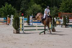 DSC04561_s (AndiP66) Tags: horse macro sports sport schweiz switzerland jumping sony july sp di if juli alpha tamron concours pferd equestrian f28 solothurn ld horsejumping 70200mm wettbewerb 2014 springen kantonsolothurn balsthal springreiten cantonsolothurn andreaspeters pferdespringen 77m2 a77ii ilca77m2 77ii 77markii slta77ii