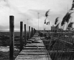 Decommissioned Fuel Transfer (Owl's Flight) Tags: newjersey dock nj papernegative atlanticcity 4x5 ac southjersey waterway caffenol ofp graphicview kevinhooa fujifujinon56