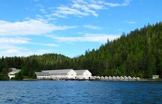 Alaska Salmon Fishing Lodge - Ketchikan 29