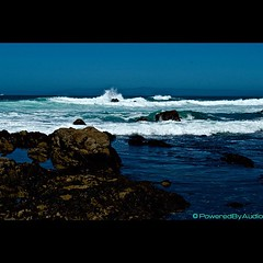 Waves Of Old (PoweredByAudio) Tags: ocean california city blue sea portrait sky plants white seascape color art nature rock cali marina work square landscape happy photography bay coast monterey seaside jj cool nice nikon pretty waves photographer natural artistic sweet stones lol wildlife horizon creative like montereybay happiness panoramic pop fave pacificocean shore squareformat montereycounty pacificgrove hue epic chill selfie photooftheday 831 nikkorlens asilomarbeach statebeach iphoneography nikond5000 instagramapp poweredbyaudio poweredbyaudiophotpgraphy