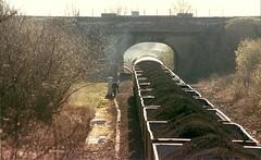 OAKENSHAW RED LIGHT (agathaccat) Tags: train grid wakefield trainspotting mgr diesellocomotive oakenshaw 56100 oakenshawjunction