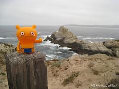 Ugly Coastline (tiramisu_addict) Tags: california toys vinyl minifigs pointlobos uglydolls wage davidhorvath sunminkim travelbuddies cypressgrovetrail