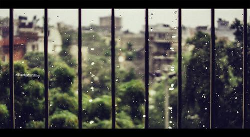 Much needed rain