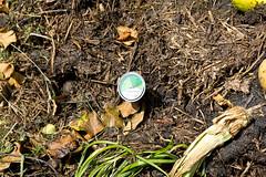60° au coeur du compost