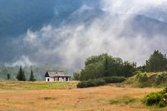 Morning (Irene Becker) Tags: morning fog forest day village tara serbia balkan srbija taramountain zaovine bajinabašta westserbia zlatibordistrict irenebecker nacionalniparktara imagesofserbia branalazići irenebeckereu
