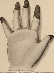 Anglų lietuvių žodynas. Žodis admixture reiškia n 1) priemaiša; 2) mišinys lietuviškai.