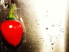Peperone (Danilo_83) Tags: vegetables pepper verdure peperone