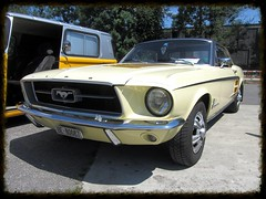 Ford Mustang 1967 (v8dub) Tags: auto old classic ford car automobile muscle automotive voiture pony 1967 oldtimer mustang oldcar collector wagen pkw klassik worldcars