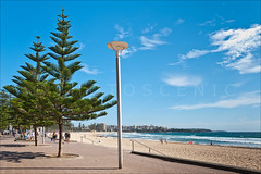 Manly Beach,Sydney (Thomas Joannes) Tags: ocean seascape colour tourism surf waves photos thomas surfer sydney scenic picture australia surfing photograph nsw surfboard shelly newsouthwales coastline aus joannes australie sceneries  sydneybeaches frenchphotographer therocksmarket scenicphoto thomasjoannes manlywharfhotel photoscenic manlymarket
