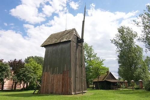 Koźlak składak (Kotwasice, Goranin) w skansenie w Gosławicach