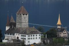 Schlosskirche Spiez ( Gotteshaus reformiert - Erwähnt 1228 - Erbaut um das Jahr 1000 - Kirche ) und Schloss Spiez ( château Castle castello ) im Dorf Spiez am Thunersee im Berner Oberland im Kanton Bern der Schweiz (chrchr_75) Tags: albumzzz201703märz märz 2017 hurni christoph chrchr chrchr75 chrigu chriguhurni schloss castle château castello kasteel 城 замок castillo mittelalter geschichte history gebäude building archidektur albumschweizerschlösserburgenundruinen albumschlösserkantonbern bern berne berna bärn schlossbern schlosskantonbern chriguhurnibluemailch suisse switzerland svizzera suissa swiss sveitsi sviss スイス zwitserland sveits szwajcaria suíça suiza kantonbern kanton berner oberland berneroberland thunersee alpensee see lake lac sø järvi lago 湖 albumthunersee schweiz