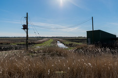 Pumphouse (Number Johnny 5) Tags: countryside tamron d750 nikon wires east sunlight telegraph anglia pole rural 2470mm norfolk imanoot