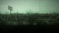 Today (michael.veltman) Tags: commute commuting metra train i55 highway tones mood rain rainy green window