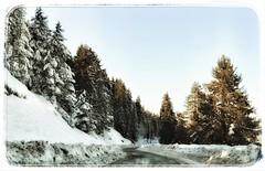 * (PattyK.) Tags: ioannina giannena epirus ipiros greece grecia griechenland hellas ellada balkans europe europeanunion amateurphotographer snapseed ιωάννινα γιάννενα ήπειροσ βαλκάνια ελλάδα ευρώπη ανήλιο χιόνι χειμώνασ 2017 κρύο βουνό alpine snow cold february winterlandscape