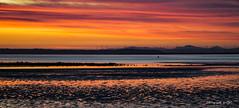Sunrise (All types of Photography by CJC) Tags: sonya6000 sony a6000 reflection beachsunrise beachsunset australia australian victoriaaustralia colour orange landscape beach sea water sunset sunrise
