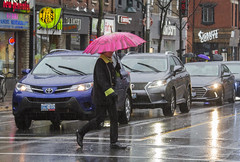 Crossing Bloor in the rain (jer1961) Tags: toronto rain rainstorm umbrella bloorstreet wet traffic annex theannex