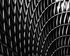 Squirts (gibel49) Tags: londra kx h soffitto linee curve bn monocromo luce ombre astratto astrazione