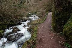 2JAC3301_exmoor_170313 (_husky_) Tags: devon exmoor exmoornationalpark fuji1655 fujixt1 nationaltrust somerset watersmeet