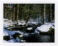 (babireley) Tags: polaroid250 fujifilmfp100c littleindianrun pawilds pottercounty pa pottercountypa susquehannockstateforest part44 winter snow jerseyshorepike