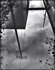 Rain puddle (Bob R.L. Evans) Tags: blackandwhite powerlines reflection weather rain distortion unusual ipadphotography clouds sky