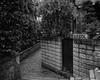 Tokyo50-41 (Diacritical) Tags: japan kagurazaka tokyo street april12017 leicacameraag leicamtyp240 summiluxm11435asph f95 ¹⁄₂₅₀sec centerweightedaverage