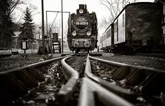 dampflok 994633 (laird.lothar) Tags: steam steamengine germany historic vintage railway rails train rasender roland rügen eisenbahn nostalgie schienen