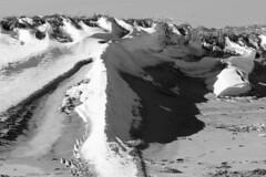 Snow Drifts at the Beach (brucetopher) Tags: beach snow drift drifting winter sand black white blackandwhite bw blackwhite monochrome contrast tone tones