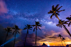 2017 Milky Way Tour Chinaman's Hat (JUNEAU BISCUITS) Tags: milkyway 2017milkyway astrophotography astronomy chinamanshat mokolii hawaii oahu kaneohe windward palmtree coconuttree longexposure ocean beach skyscape sky stars nikond810 nikon nightphotography nightsky