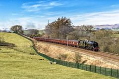 Unseasonal High (4486Merlin) Tags: 46115 cumbria england europe exlms lms7proyalscot railways scotsguardsman steam transport unitedkingdom grayrigg gbr wintercumbrianmountainexpress rytc wcrc wcml