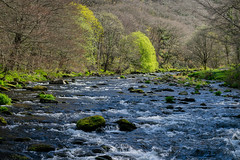 East Lyn River (Adam Spink) Tags: watersmeet exmoor nation park uk england somerset outdoors nikon nature reserve water trust waterfall river east lyn falls