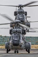 COPYRIGHT. FRANCISCO FRANCÉS TORRONTERA. (12) (Francisco Francés Torrontera (Oroel)) Tags: as332 ejércitodelaire ejércitodelaireespañol airbushelicopter afganistan afganistanwar spanisharmyhelicopter súperpuma militaryhelicopters ejércitoespañol fuerzaaéreaespañola
