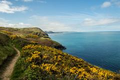DSC_0245 (shieladixon) Tags: walking nature unspoiled coast bluesky wales coastal path welsh