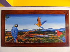 In a Parrot Universe (knightbefore_99) Tags: mexico mexican art parrot bird fly decameron painting hotel rincon guayabitos nayarit awesome fantastic colour cool